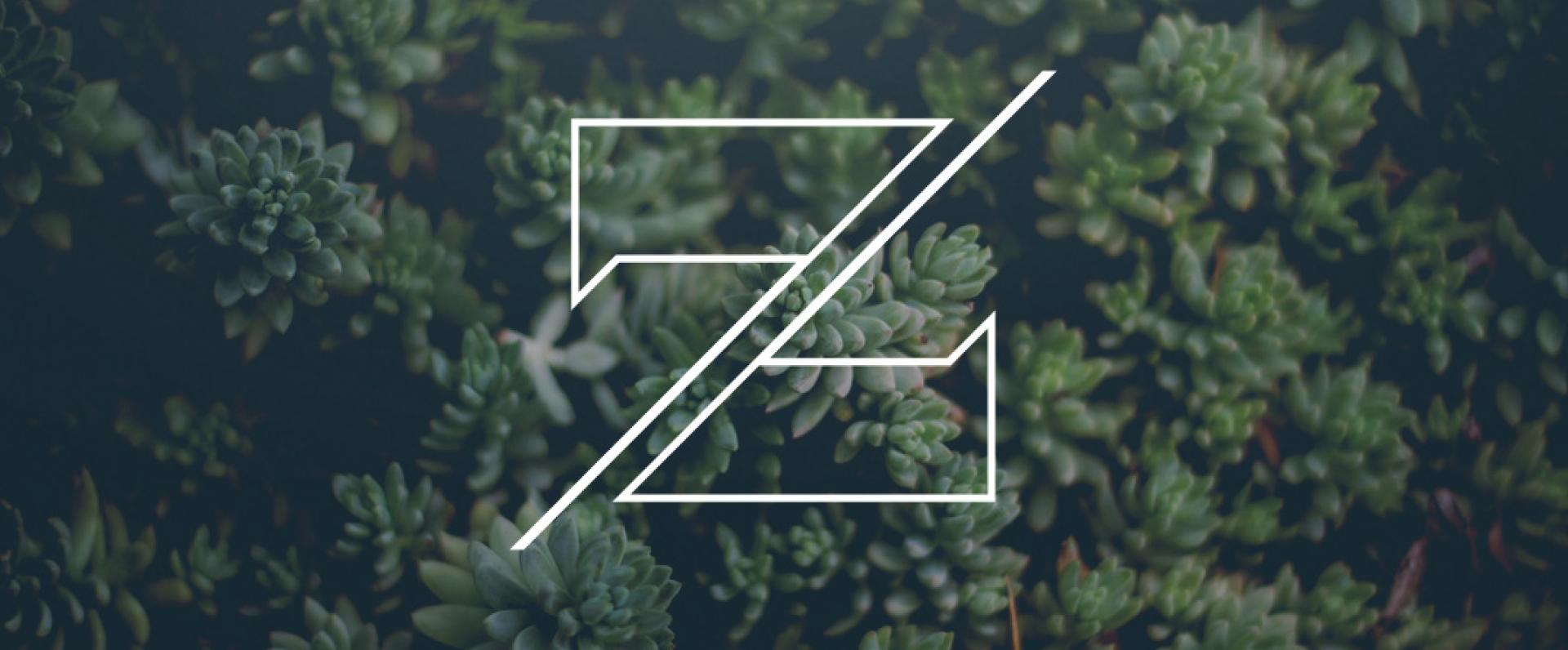 ZVI_Header-1