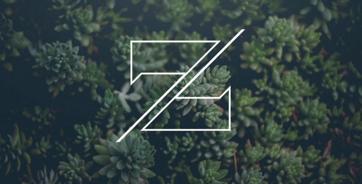 Zvi Branding